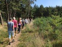 Foto van groep wandelaars Balance Support in het bos